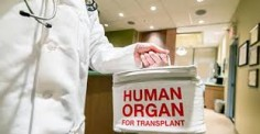 Transplant Expert Dispels Organ Donation Misconceptions