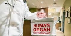 Transplant Expert Dispels Organ Donation Misconceptions
